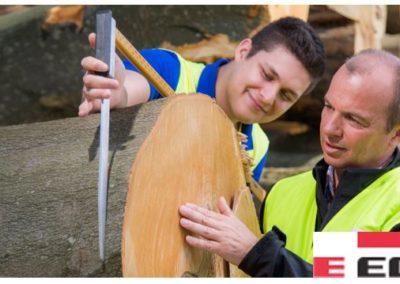 Unternehmensportrait: EGGER Holzwerkstoffe Brilon GmbH & Co. KG